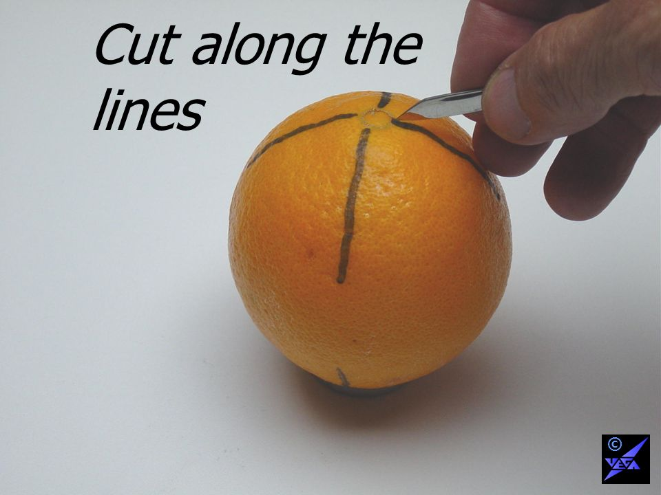 Cut along the lines ©