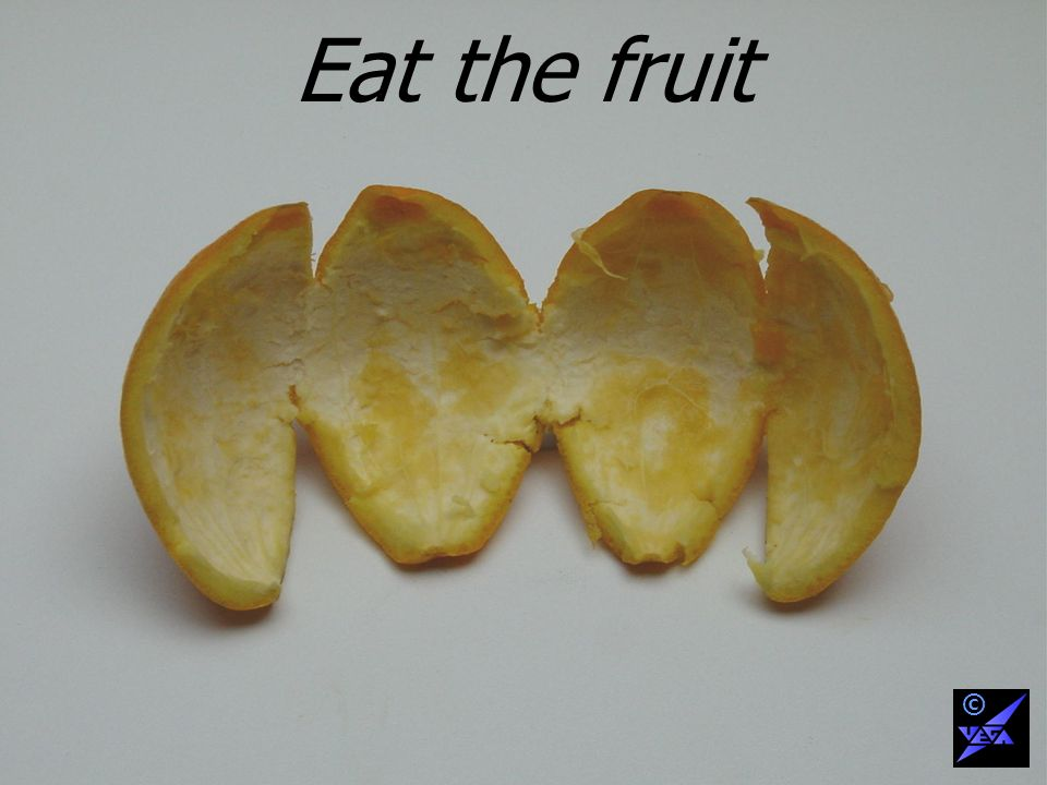 Eat the fruit ©