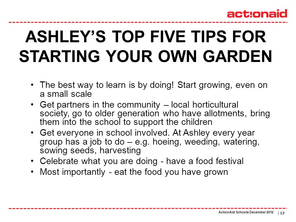 ActionAid schools | DATE | 13 ASHLEYS TOP FIVE TIPS FOR STARTING YOUR OWN GARDEN The best way to learn is by doing! Start growing, even on a small sca