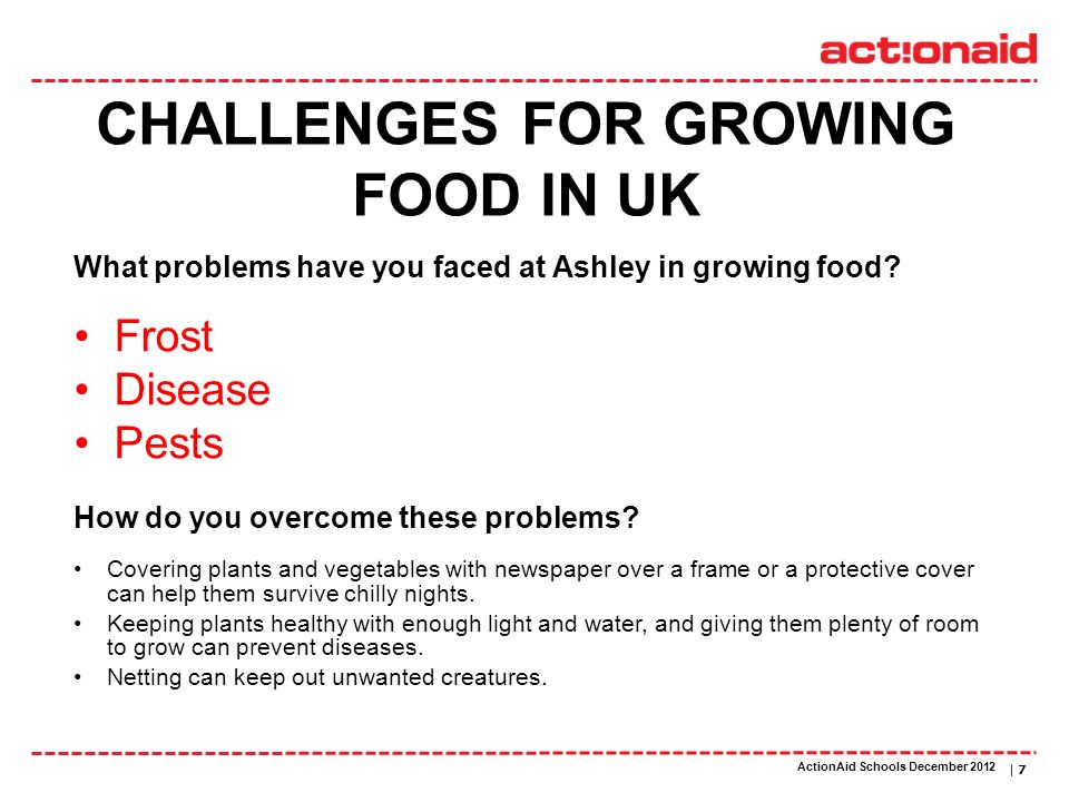 ActionAid schools | DATE | 7 CHALLENGES FOR GROWING FOOD IN UK Frost Disease Pests What problems have you faced at Ashley in growing food? Covering pl