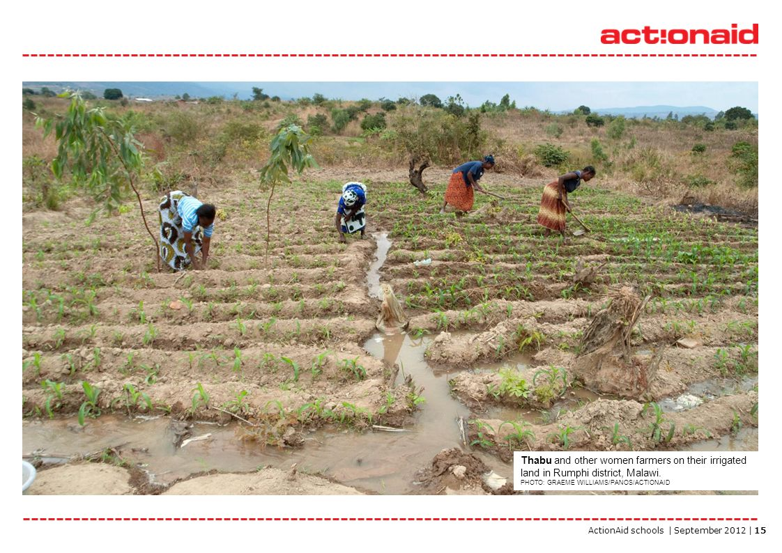 ActionAid schools | September 2012 | 15 Thabu and other women farmers on their irrigated land in Rumphi district, Malawi. PHOTO: GRAEME WILLIAMS/PANOS