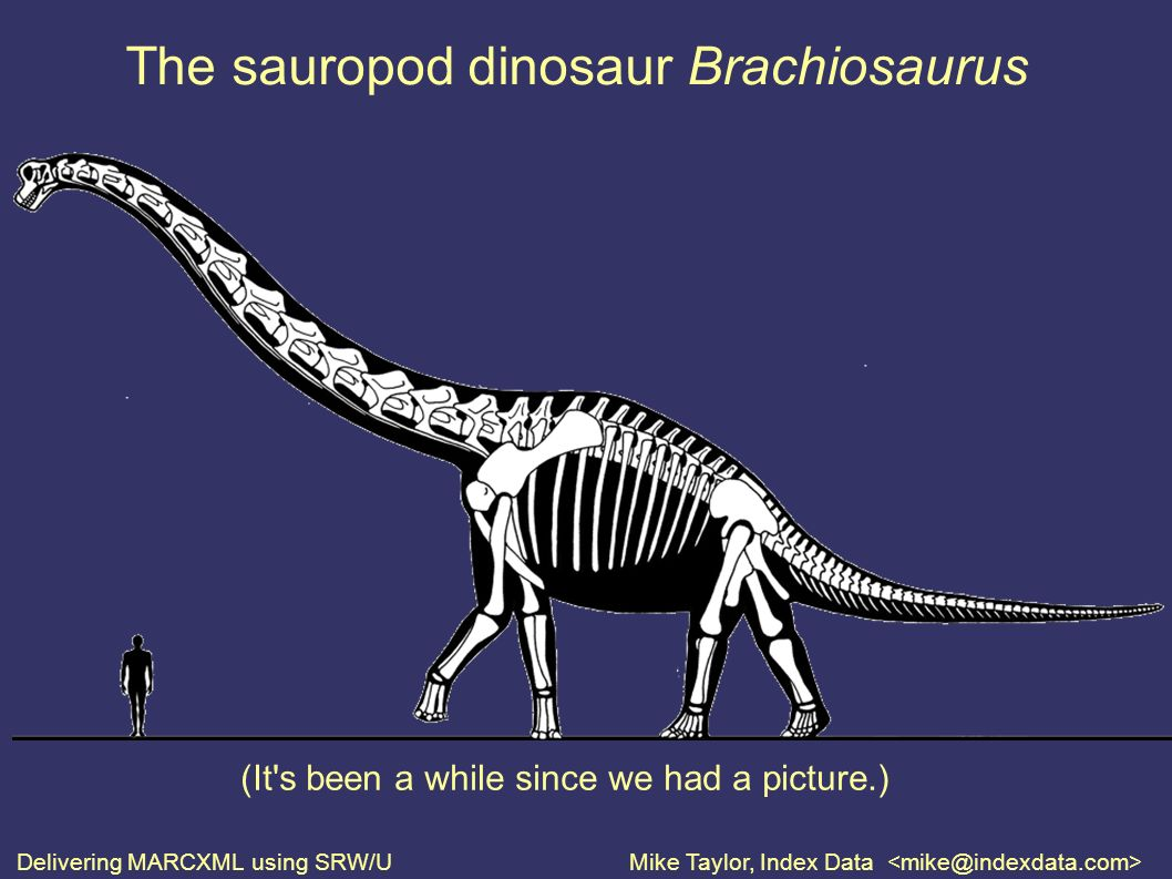 Delivering MARCXML using SRW/UMike Taylor, Index Data The sauropod dinosaur Brachiosaurus (It s been a while since we had a picture.)