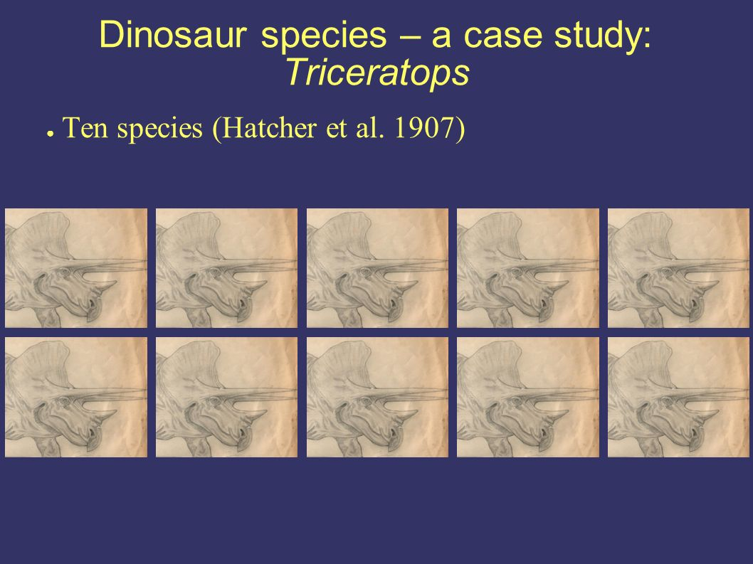 Dinosaur species – a case study: Triceratops Ten species (Hatcher et al. 1907)