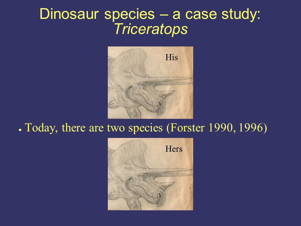 Dinosaur species – a case study: Triceratops Today, there are two species (Forster 1990, 1996) His Hers