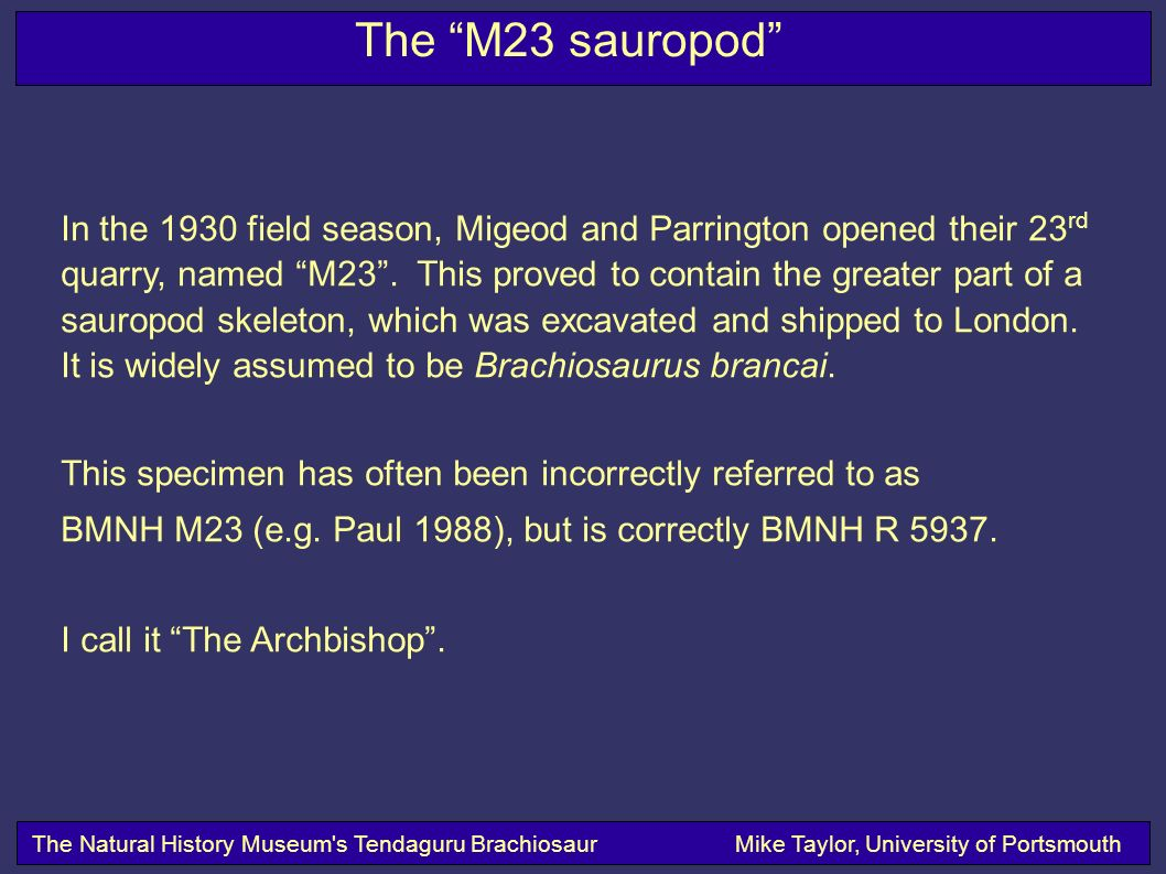 The M23 sauropod The Natural History Museum s Tendaguru BrachiosaurMike Taylor, University of Portsmouth In the 1930 field season, Migeod and Parrington opened their 23 rd quarry, named M23.