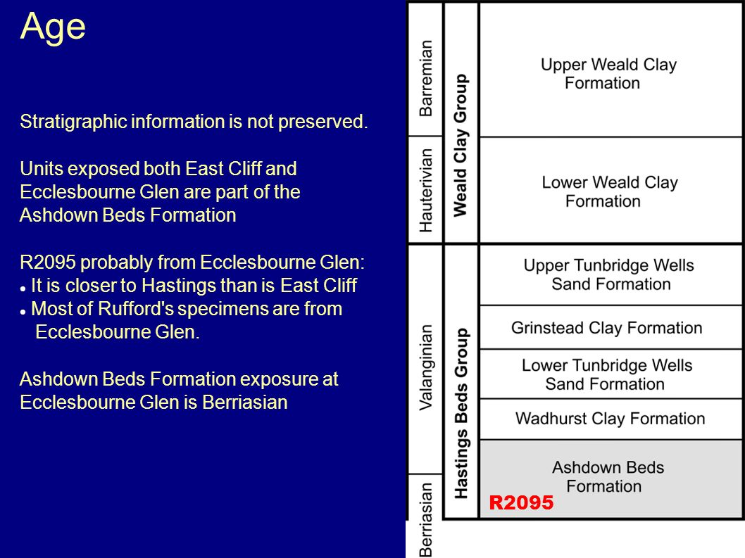 Age Stratigraphic information is not preserved. Units exposed both East Cliff and Ecclesbourne Glen are part of the Ashdown Beds Formation R2095 proba