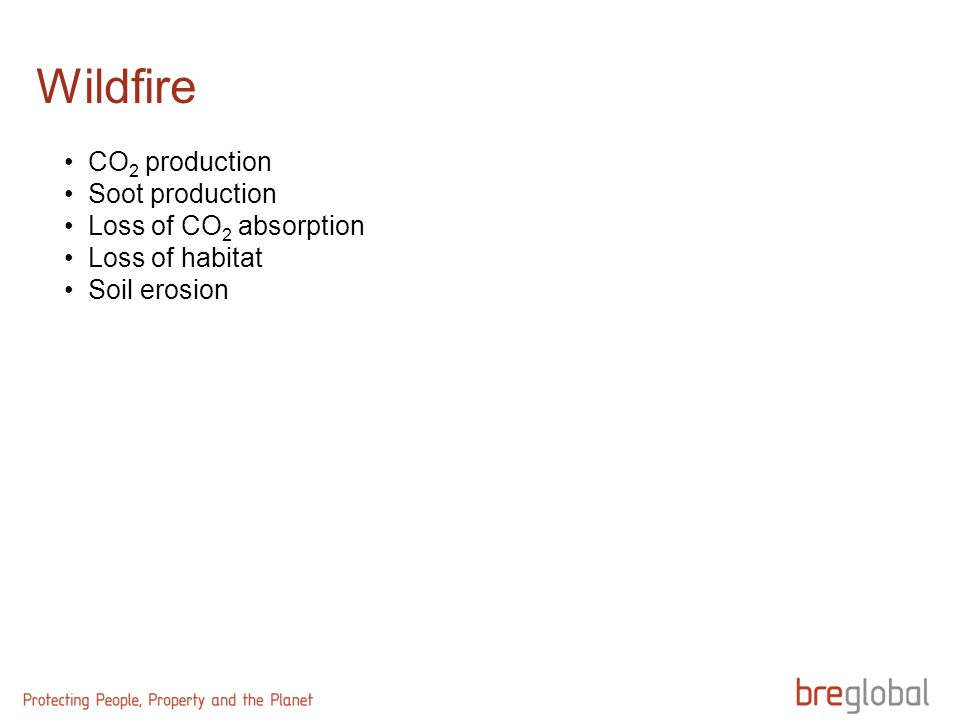 Wildfire CO 2 production Soot production Loss of CO 2 absorption Loss of habitat Soil erosion