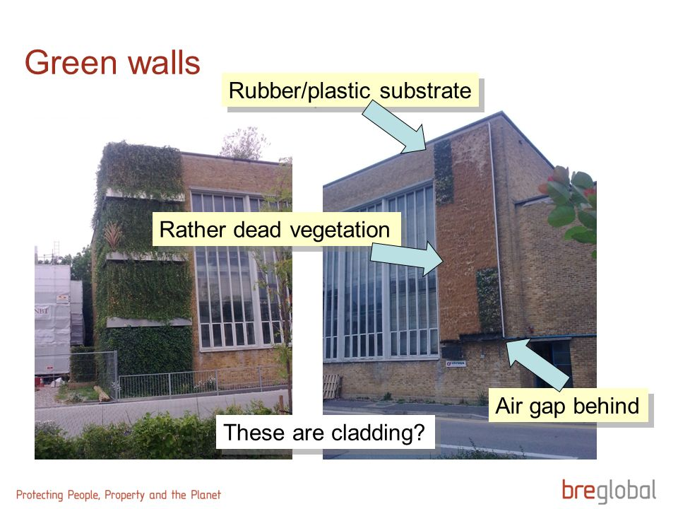 These are cladding? Rubber/plastic substrate Air gap behind Rather dead vegetation