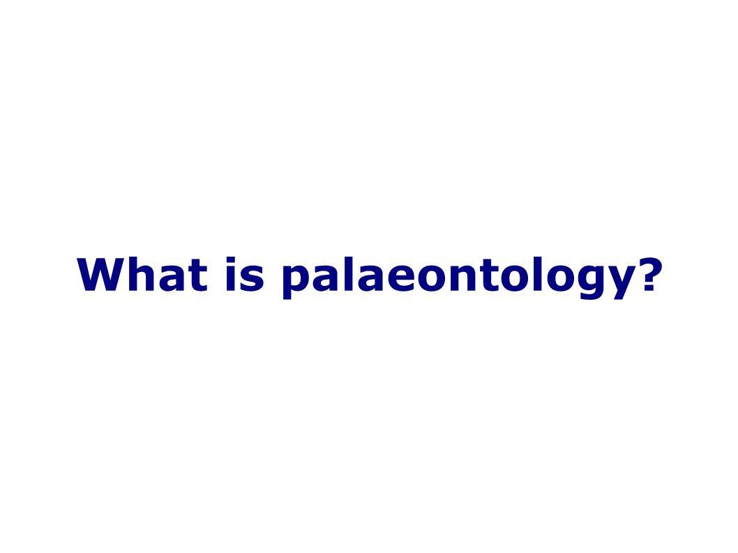What is palaeontology
