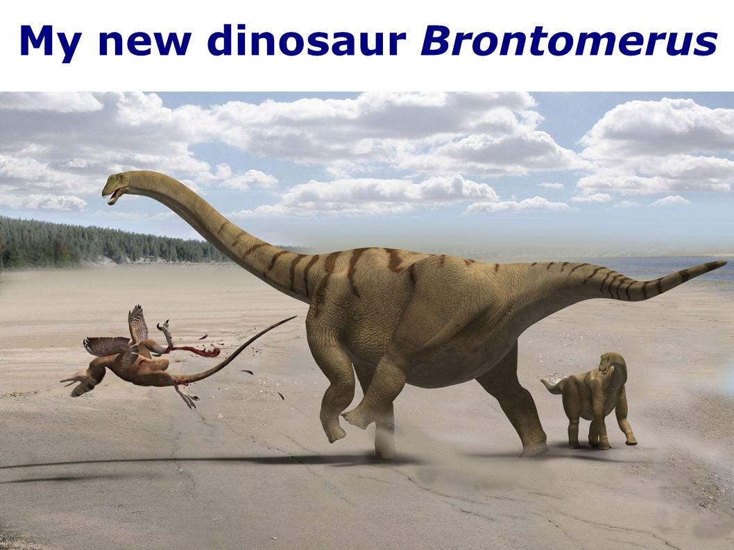 My new dinosaur Brontomerus