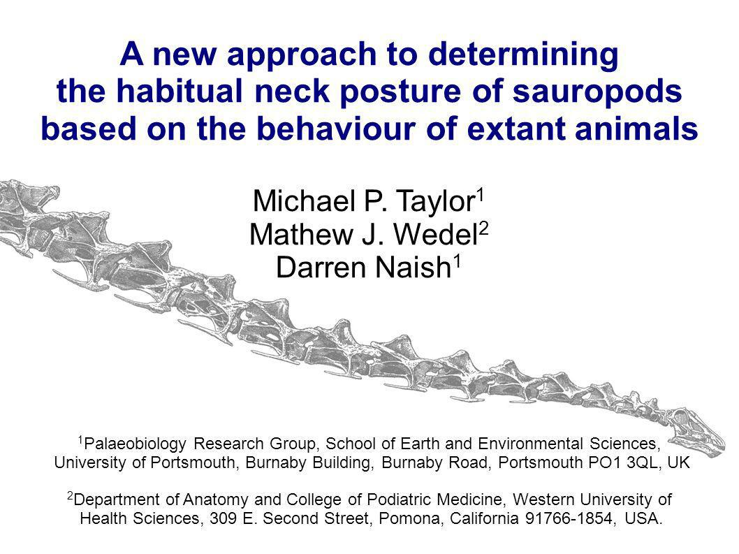 A new approach to determining the habitual neck posture of sauropods based on the behaviour of extant animals Michael P. Taylor 1 Mathew J. Wedel 2 Da