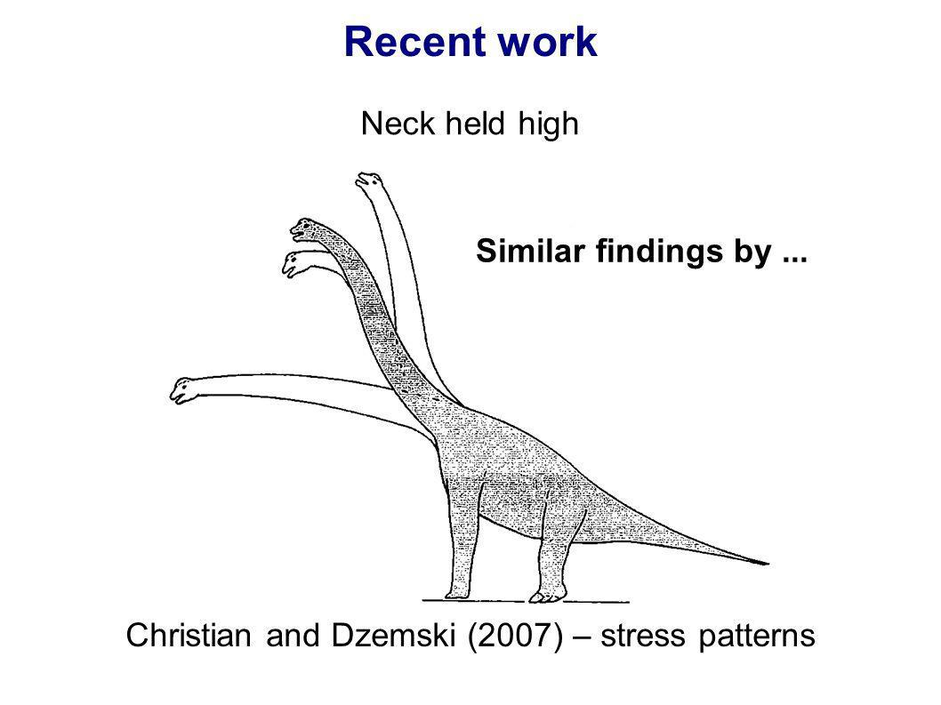 Recent work Neck held high Christian and Dzemski (2007) – stress patterns Similar findings by...