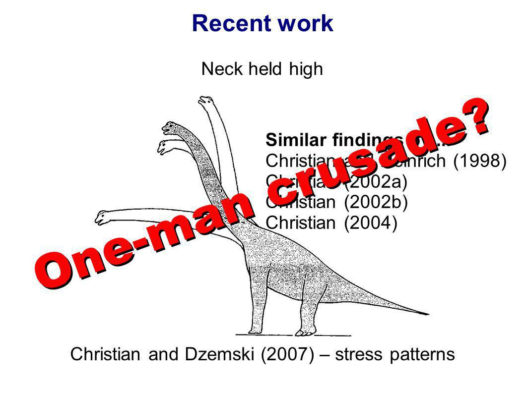 Recent work Neck held high Christian and Dzemski (2007) – stress patterns Similar findings by... Christian and Heinrich (1998) Christian (2002a) Chris