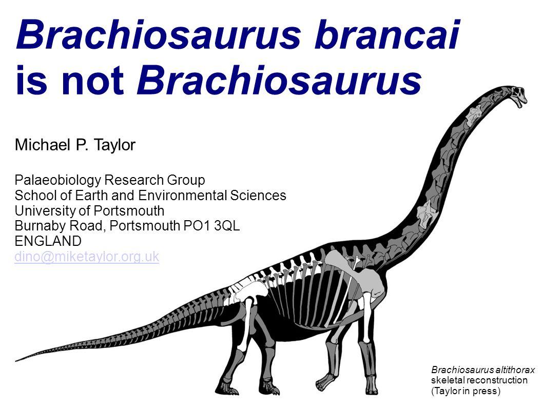 Brachiosaurus brancai is not Brachiosaurus Michael P. Taylor Palaeobiology Research Group School of Earth and Environmental Sciences University of Por