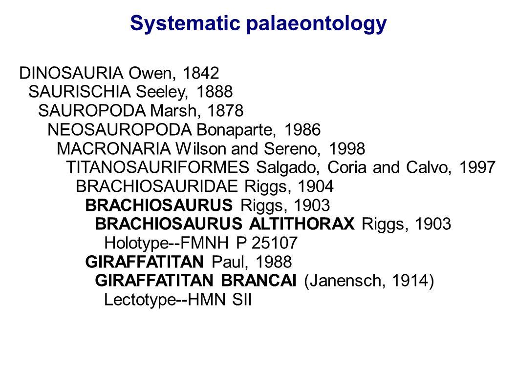 Systematic palaeontology DINOSAURIA Owen, 1842 SAURISCHIA Seeley, 1888 SAUROPODA Marsh, 1878 NEOSAUROPODA Bonaparte, 1986 MACRONARIA Wilson and Sereno