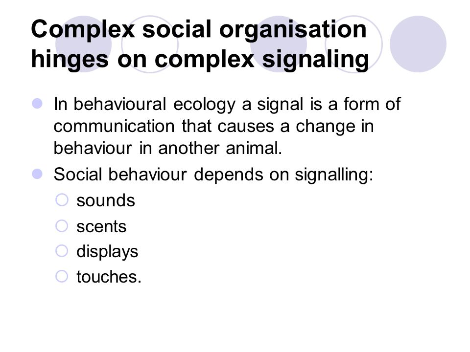 In behavioural ecology a signal is a form of communication that causes a change in behaviour in another animal. Social behaviour depends on signalling