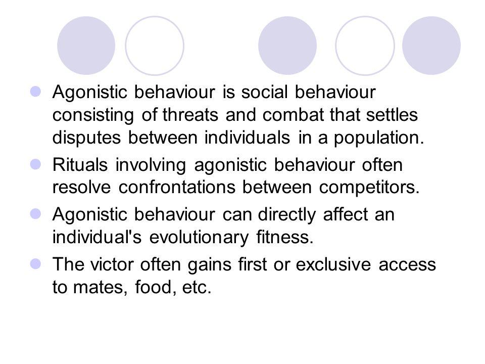 Agonistic behaviour is social behaviour consisting of threats and combat that settles disputes between individuals in a population. Rituals involving