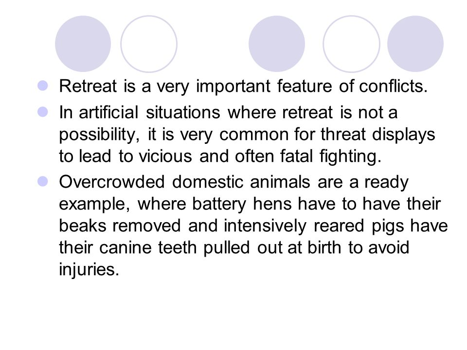 Retreat is a very important feature of conflicts. In artificial situations where retreat is not a possibility, it is very common for threat displays t