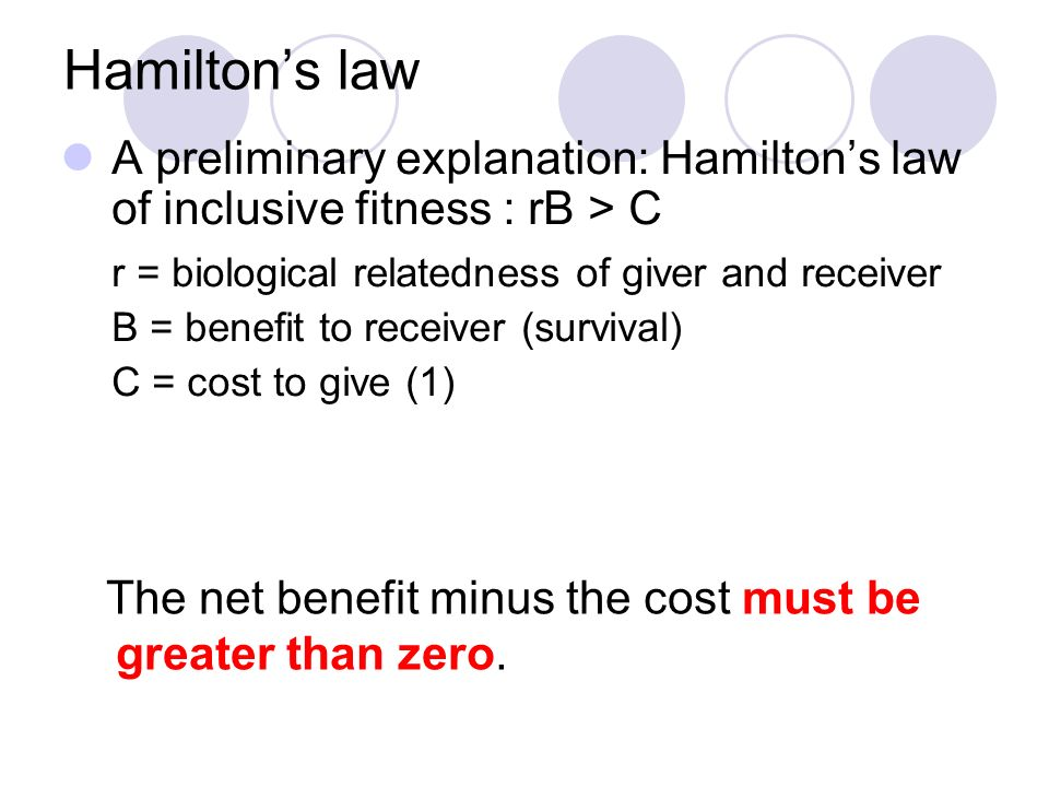 Hamiltons law A preliminary explanation: Hamiltons law of inclusive fitness : rB > C r = biological relatedness of giver and receiver B = benefit to r
