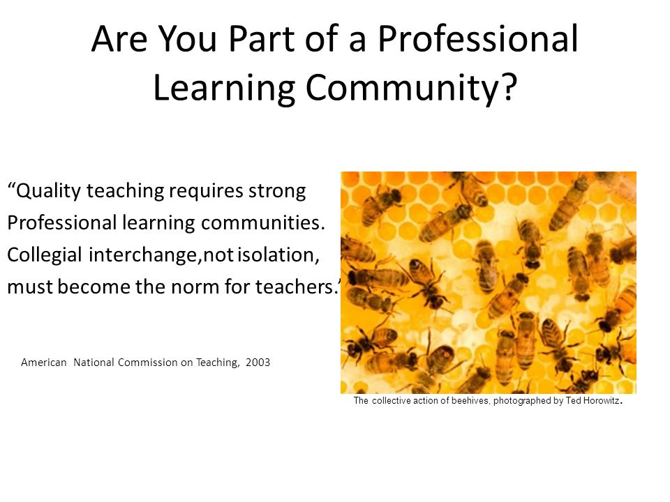 Are You Part of a Professional Learning Community.