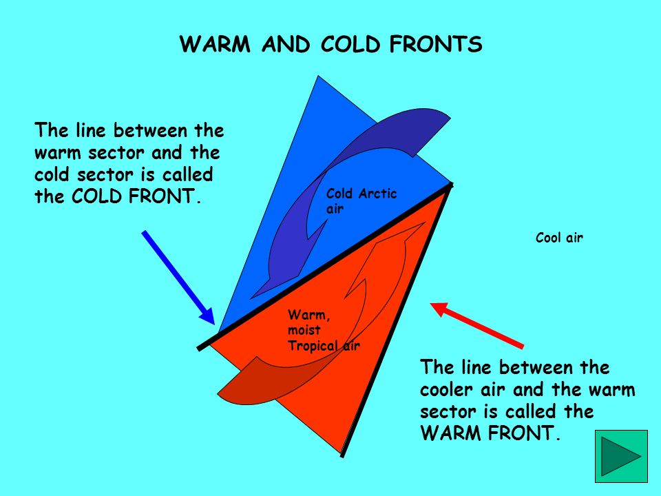 The line between the cooler air and the warm sector is called the WARM FRONT. The line between the warm sector and the cold sector is called the COLD