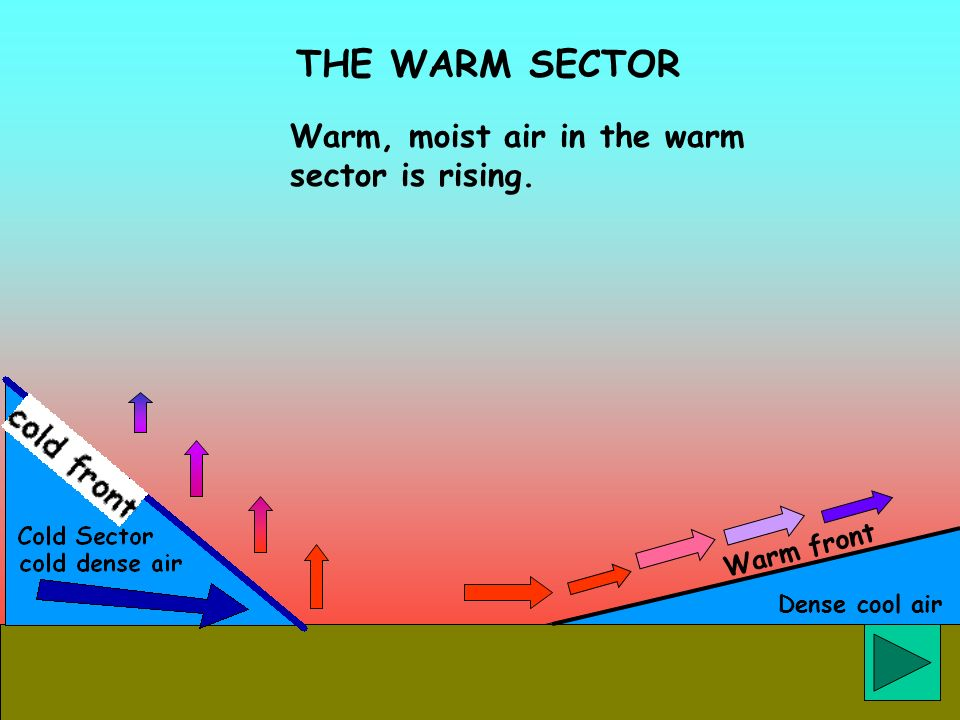 Dense cool air THE WARM SECTOR Warm front Warm, moist air in the warm sector is rising.