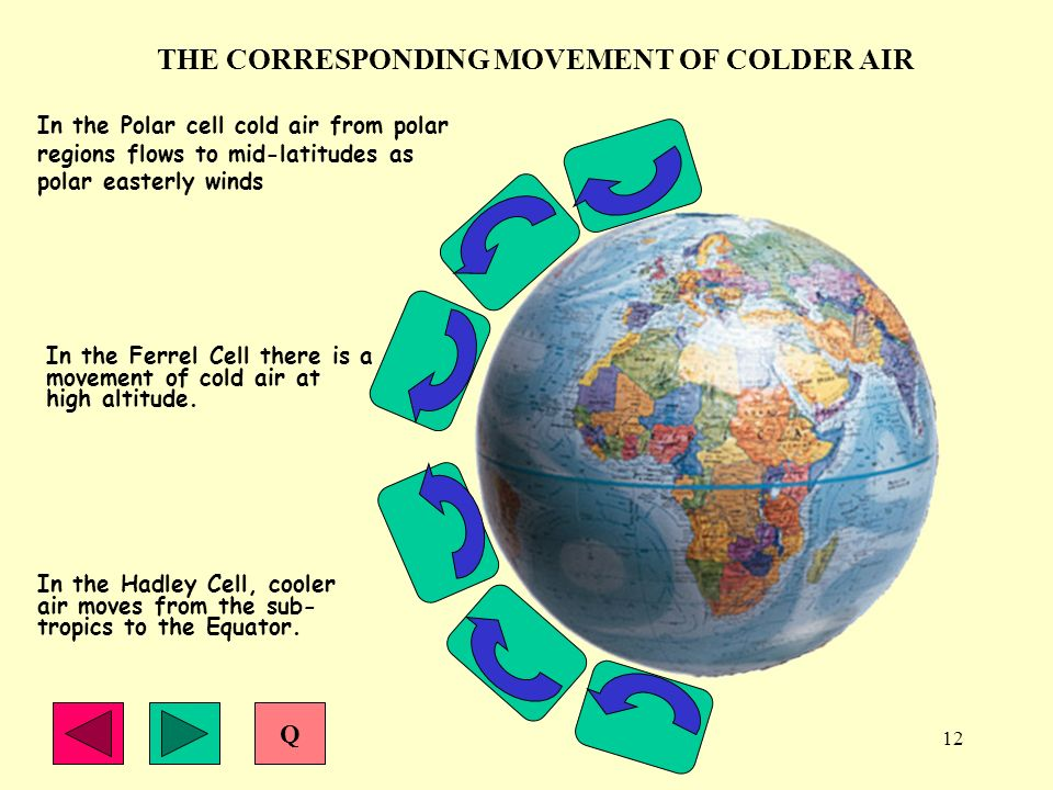 12 THE CORRESPONDING MOVEMENT OF COLDER AIR In the Polar cell cold air from polar regions flows to mid-latitudes as polar easterly winds In the Ferrel