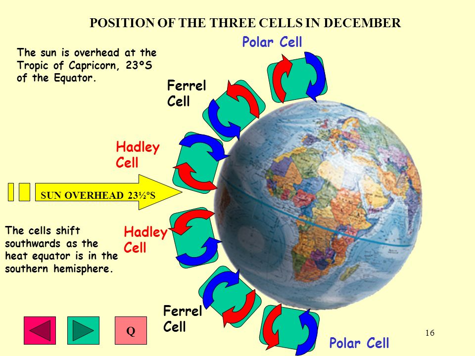 16 POSITION OF THE THREE CELLS IN DECEMBER Polar Cell Hadley Cell Ferrel Cell Polar Cell Ferrel Cell Hadley Cell SUN OVERHEAD 23½ºS The sun is overhea