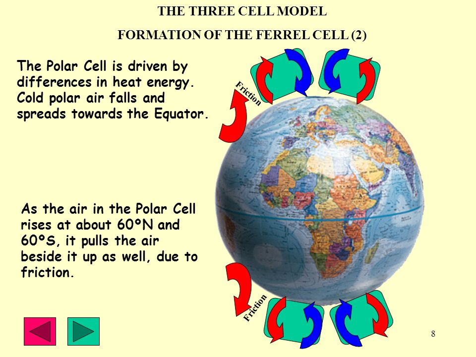 8 THE THREE CELL MODEL FORMATION OF THE FERREL CELL (2) The Polar Cell is driven by differences in heat energy. Cold polar air falls and spreads towar