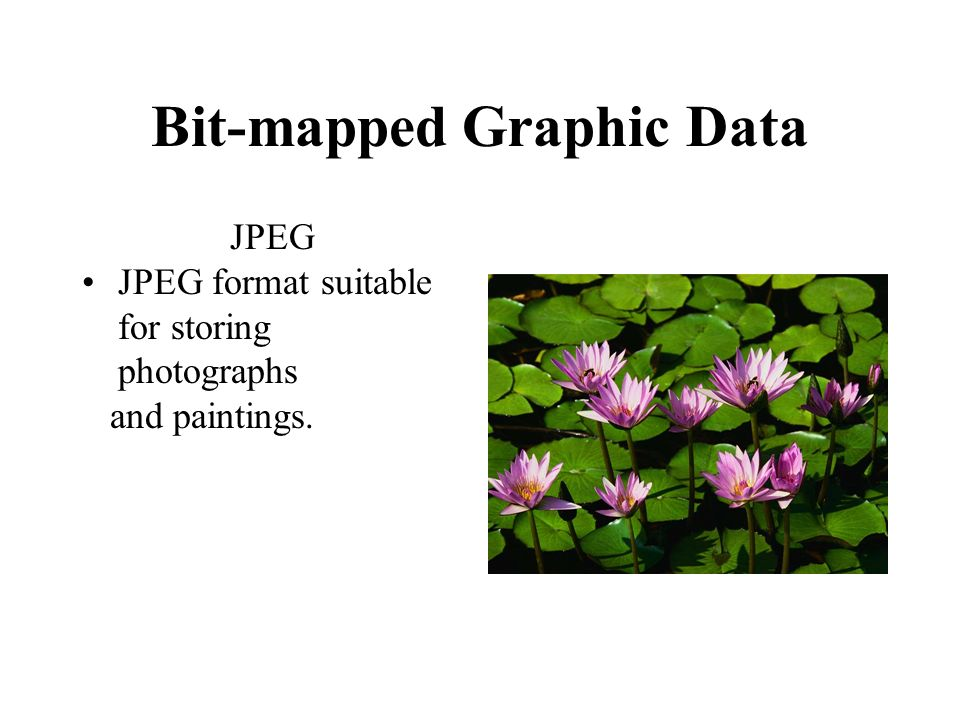 Bit-mapped Graphic Data JPEG JPEG format suitable for storing photographs and paintings.
