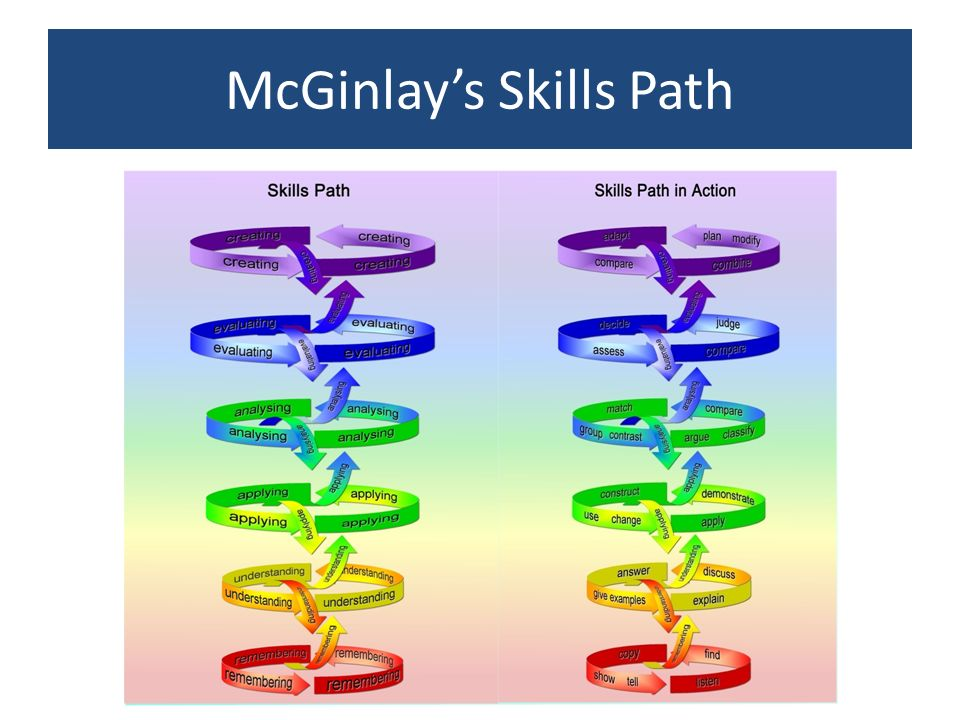 McGinlays Skills Path