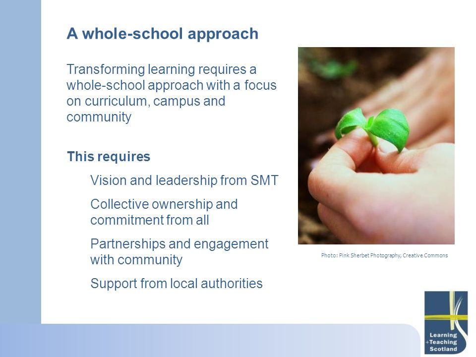 A whole-school approach Transforming learning requires a whole-school approach with a focus on curriculum, campus and community This requires Vision a