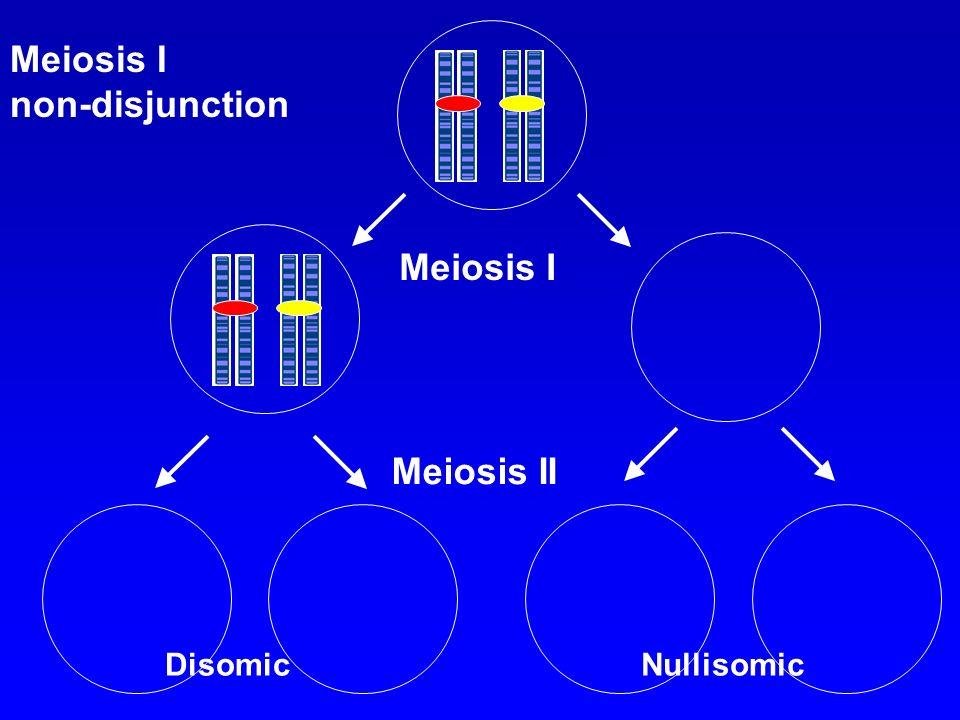 Meiosis I non-disjunction Meiosis I Meiosis II DisomicNullisomic