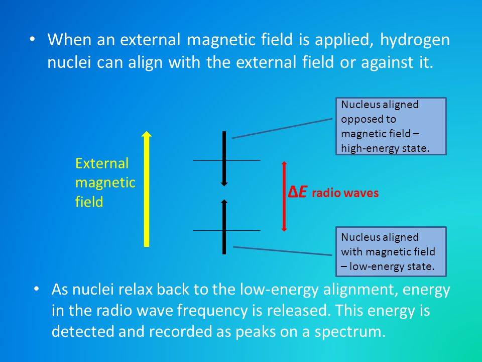 When an external magnetic field is applied, hydrogen nuclei can align with the external field or against it. E radio waves External magnetic field Nuc