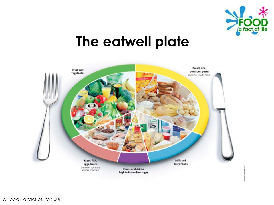 © Food - a fact of life 2008 The eatwell plate