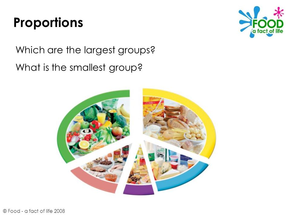 © Food - a fact of life 2008 Proportions Which are the largest groups? What is the smallest group?