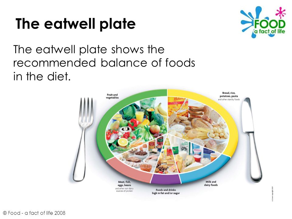 © Food - a fact of life 2008 The eatwell plate shows the recommended balance of foods in the diet. The eatwell plate