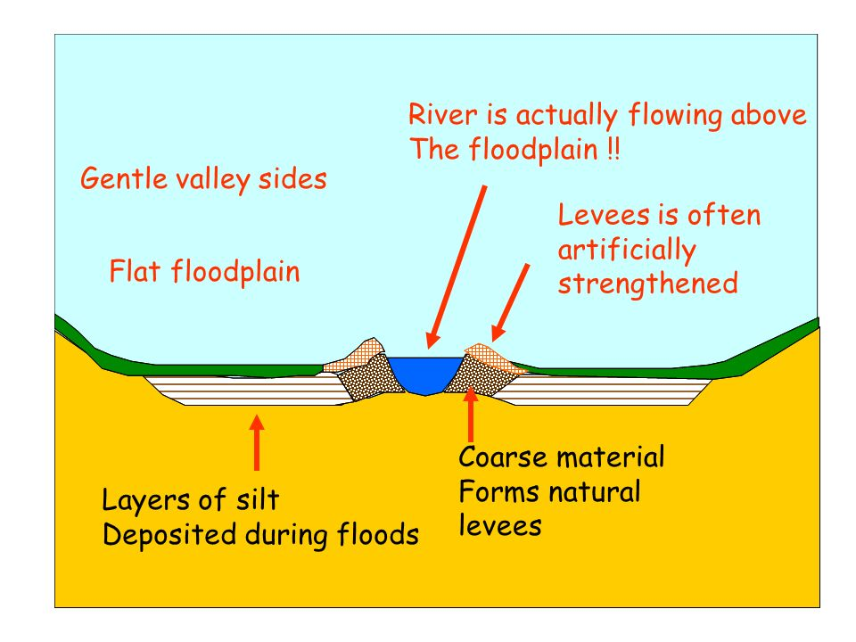 Gentle valley sides Flat floodplain Layers of silt Deposited during floods Coarse material Forms natural levees River is actually flowing above The fl