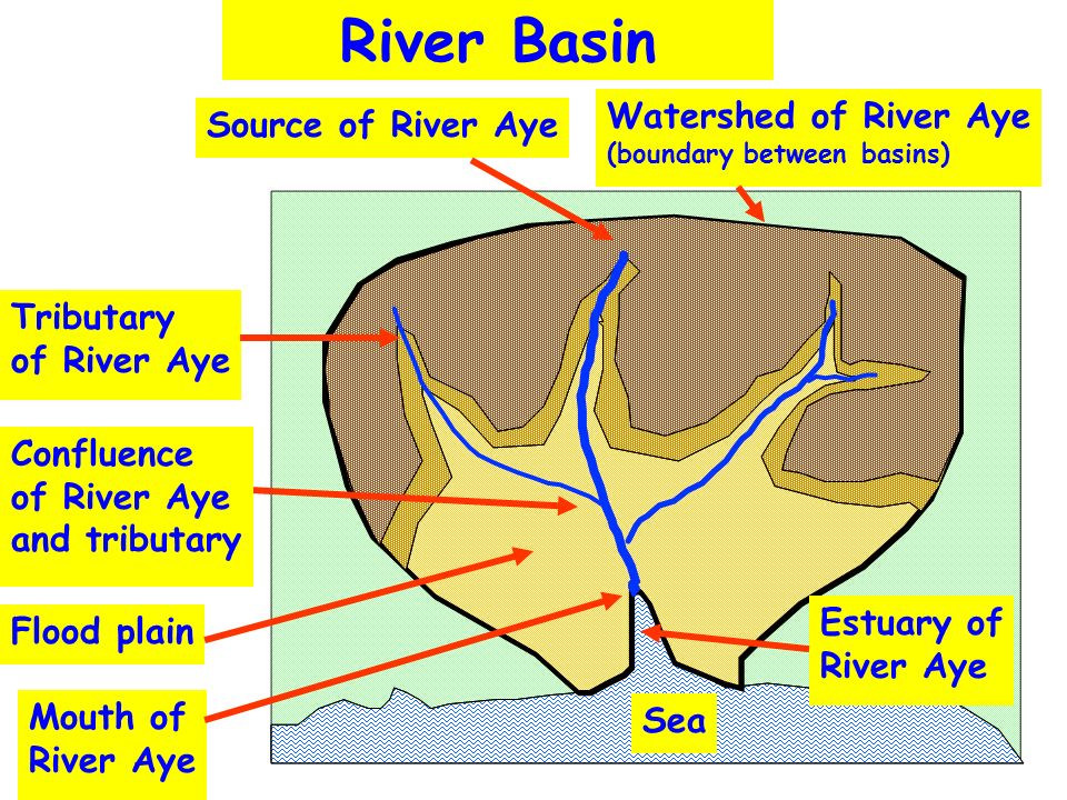 River Basin Source of River Aye Confluence of River Aye and tributary Tributary of River Aye Flood plain Mouth of River Aye Sea Estuary of River Aye W