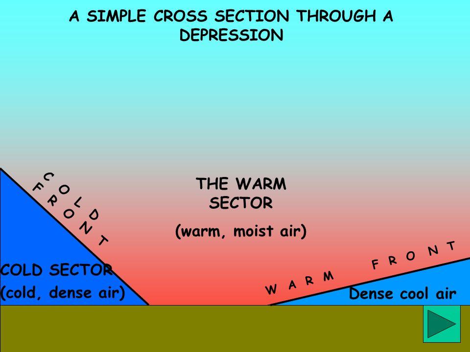 Dense cool air A SIMPLE CROSS SECTION THROUGH A DEPRESSION COLD SECTOR (cold, dense air) W A R M F R O N T C O L D F R O N T THE WARM SECTOR (warm, mo