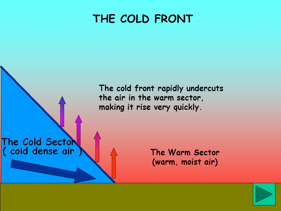 THE COLD FRONT The cold front rapidly undercuts the air in the warm sector, making it rise very quickly. The Warm Sector (warm, moist air)