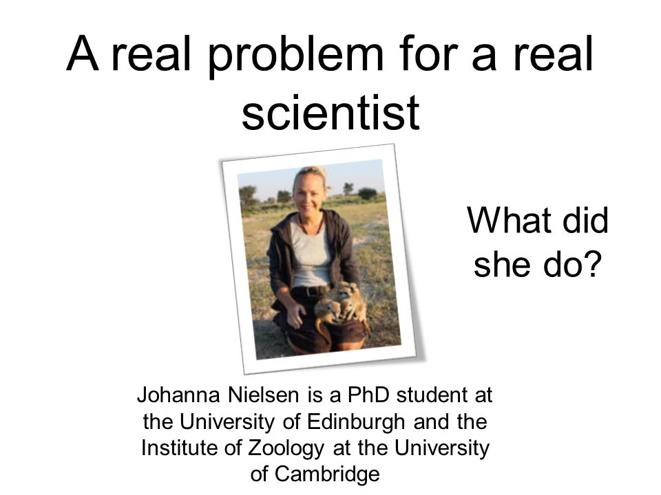A real problem for a real scientist Johanna Nielsen is a PhD student at the University of Edinburgh and the Institute of Zoology at the University of