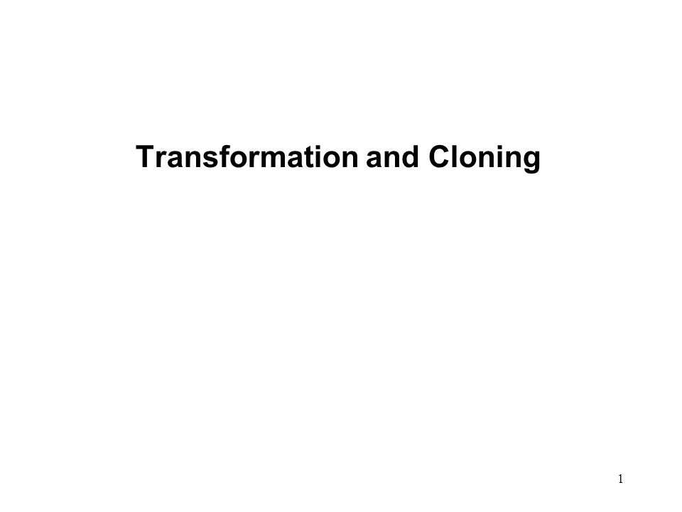1 Transformation and Cloning