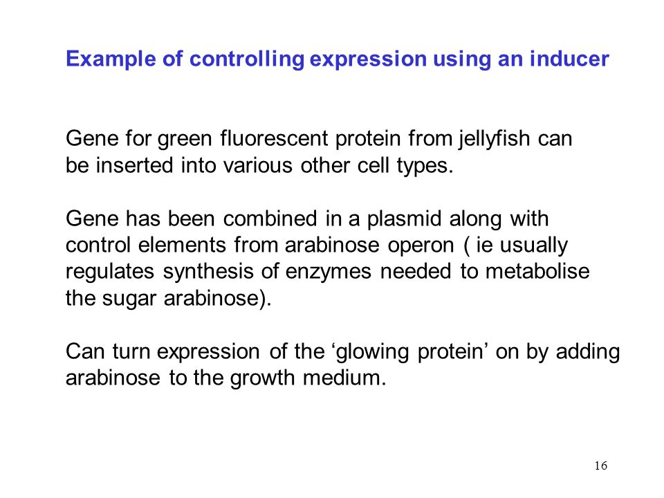 16 Example of controlling expression using an inducer Gene for green fluorescent protein from jellyfish can be inserted into various other cell types.