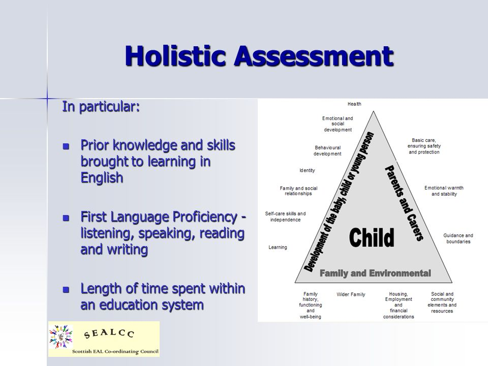 Holistic Assessment In particular: Prior knowledge and skills brought to learning in English Prior knowledge and skills brought to learning in English