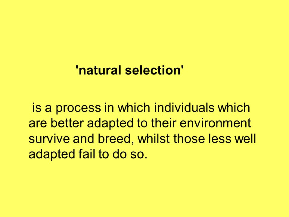 natural selection is a process in which individuals which are better adapted to their environment survive and breed, whilst those less well adapted fail to do so.