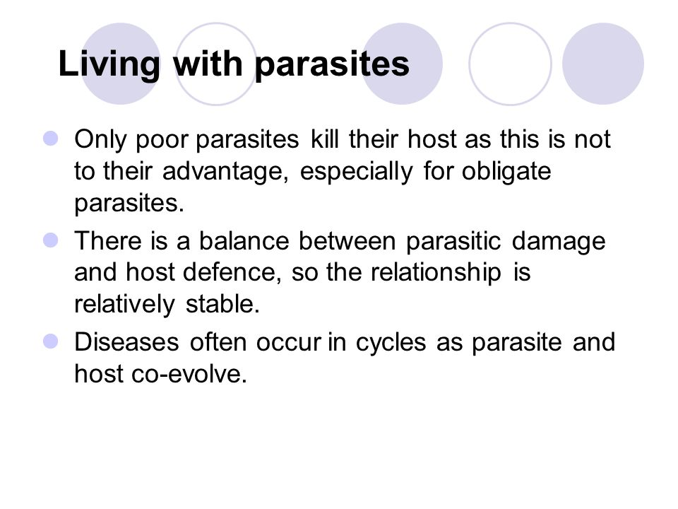 Secondary host species or vectors Vectors are organisms that transmit parasites, usually insects and ticks.