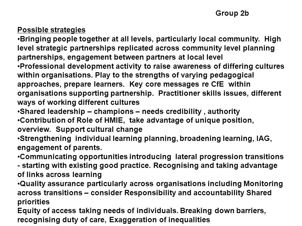 Group 2b Possible strategies Bringing people together at all levels, particularly local community. High level strategic partnerships replicated across