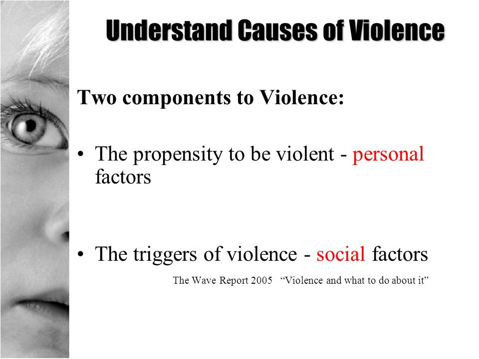 Understand Causes of Violence Two components to Violence: The propensity to be violent - personal factors The triggers of violence - social factors Th