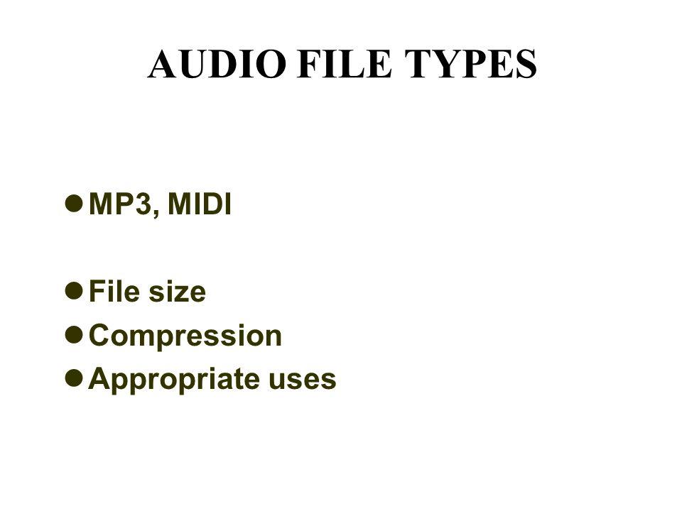 AUDIO FILE TYPES MP3, MIDI File size Compression Appropriate uses
